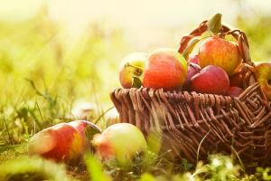 Какого числа отмечается Яблочный Спас в 2020 году