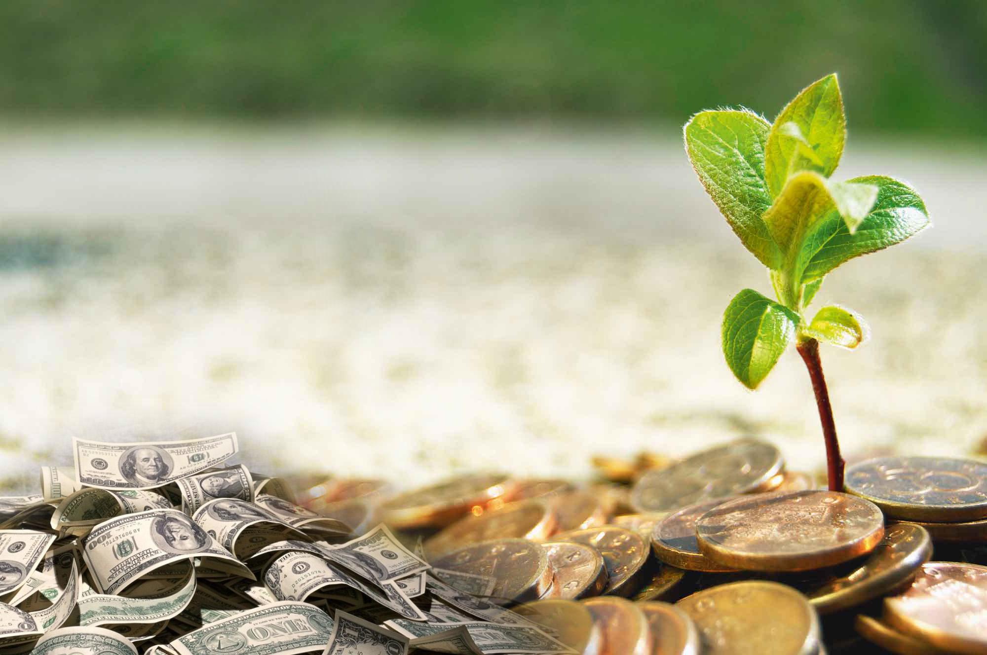 Картинки на богатство и процветание