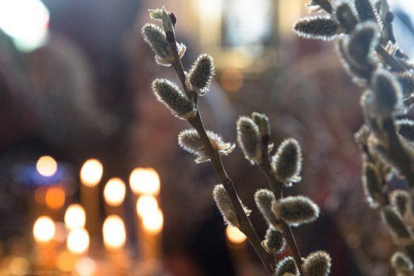 Вербное (пальмовое) воскресенье 2019 у католиков: дата