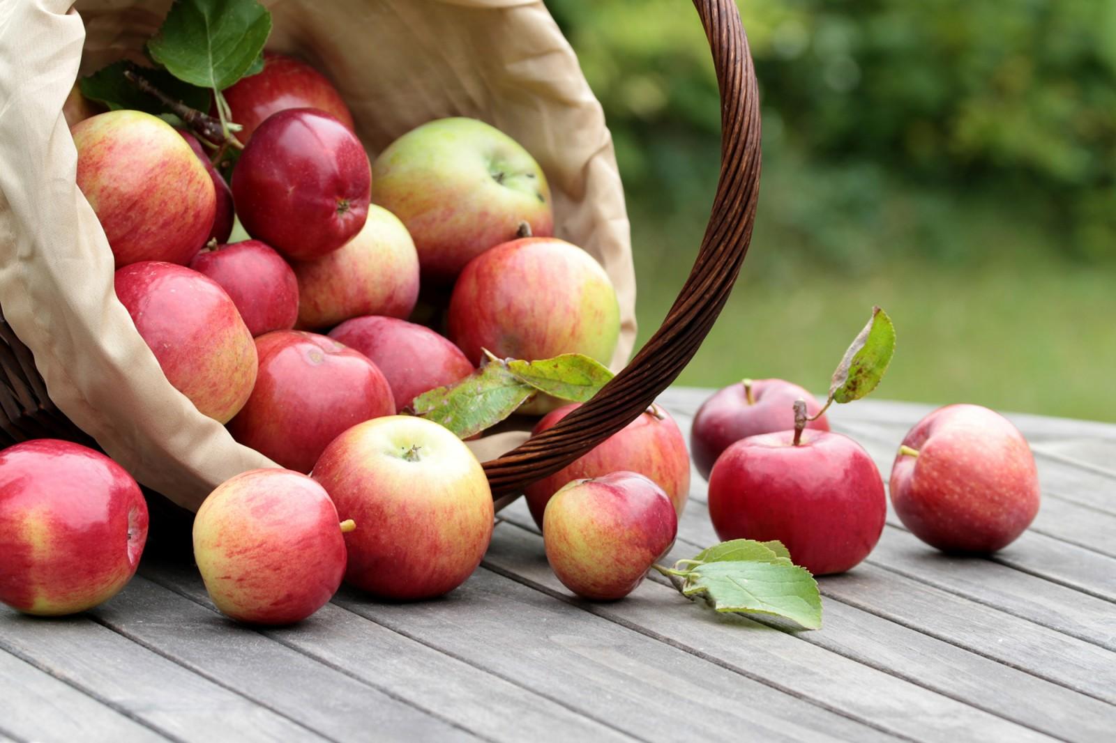 Какого числа отмечается Яблочный Спас в 2019 году